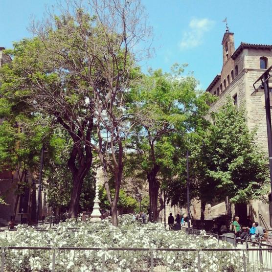 A courtyard in Ciutat Vella.