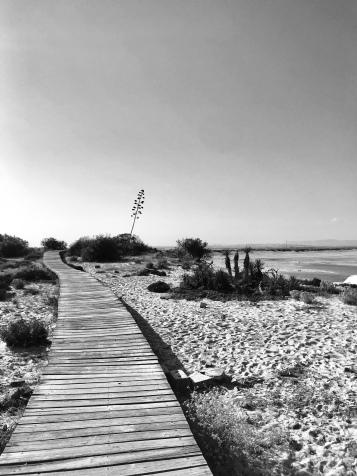 desertisland6